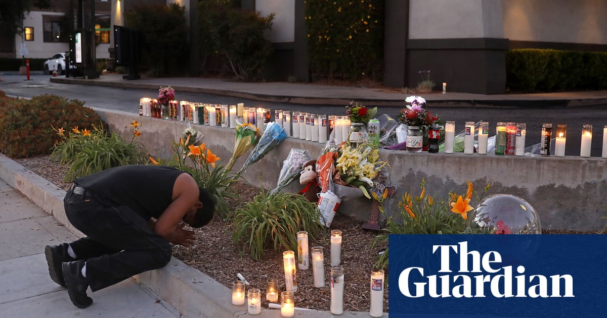 They lost loved ones to gun violence. Then their grief was politicized