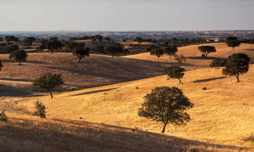 Alentejo landscape.