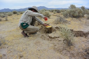 USGS geologist Christopher DuRoss measures the surface displacement from the Ridgecrest-area earthquake.