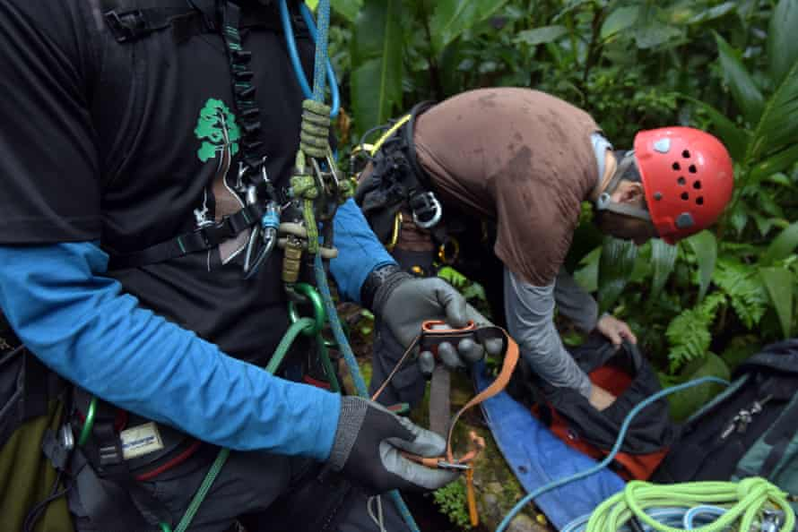 Climbing in the cloud forest
