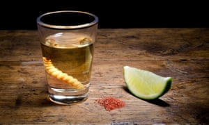 'It doesn't give you much of a hangover …' a glass of mezcal.