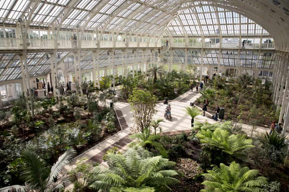 Breathtaking … the Temperate House after its £41m restoration.