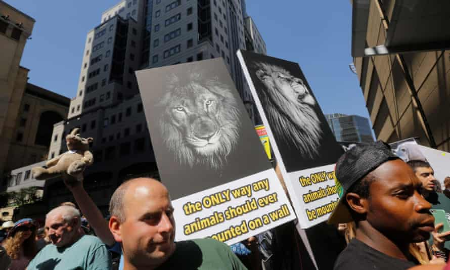 Animal rights activists carry placards during an anti- canned lion protest during the first day of the CoP17 Cites conference in Johannesburg.