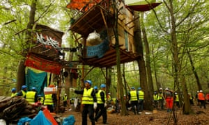 Workers clear treehouses