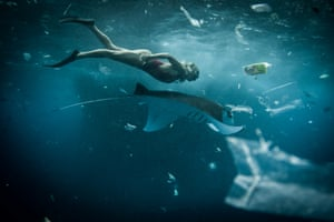 Nusa Lembongan, Bali, Indonesia. A snorkeller swims alongside a manta ray surrounded by plastic trash in December 2014.