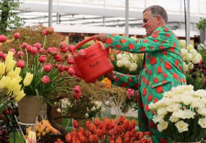 Watering the tulips