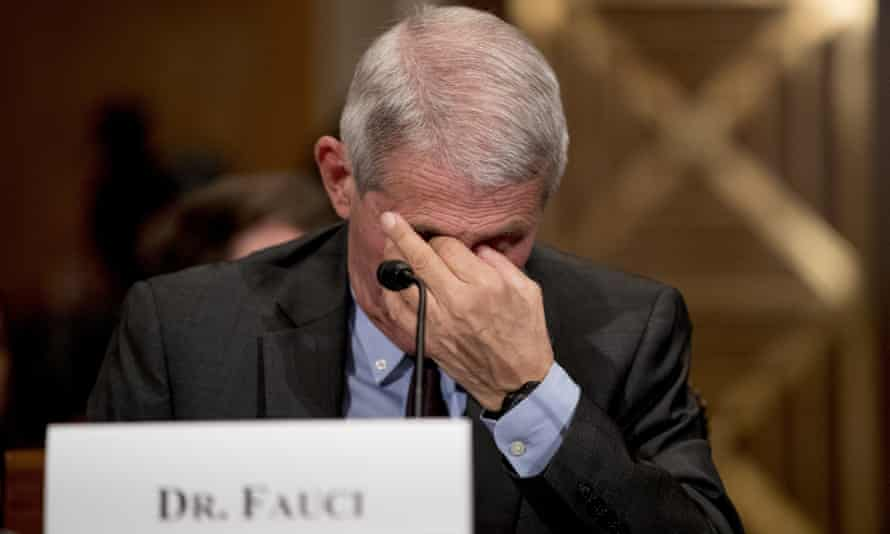 Dr Anthony Fauci, director of the National Institute for Allergy and Infectious Diseases, attends a Senate committee hearing on the coronavirus.
