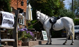 A horse stands outside a polling station, set up in a pub, as its rider votes in the European Parliament elections, near Tonbridge, south east England.