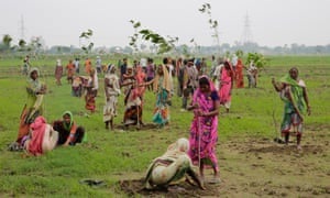 Women plant saplings on the outskirts of Allahabad, India, in 2016.