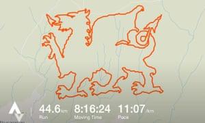 Strava art: a Welsh dragon created on the app.