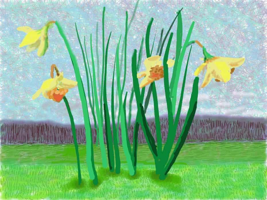 David Hockney's portrait of spring daffodils in Normandy