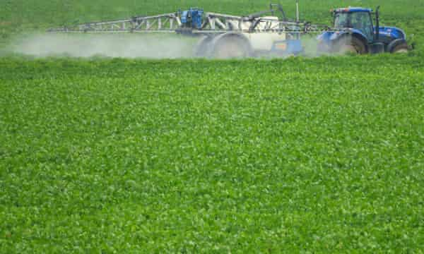 High levels of nitrogen and phosphate in soils, derived from artificial fertilisers, could be taken as evidence of the onset of the Anthropocene.