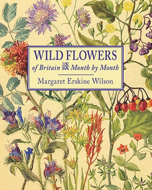 Wild Flowers of Britain Month by Month (book cover)