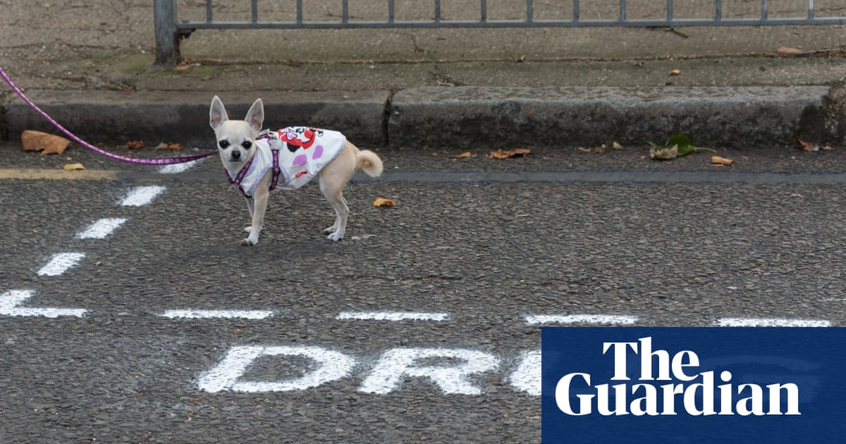 Londoners highlight drug problem with 'dealers only' parking