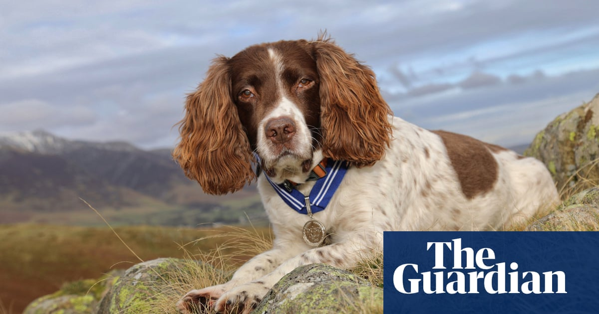 Max the Miracle Dog is first pet to receive 'animal OBE'