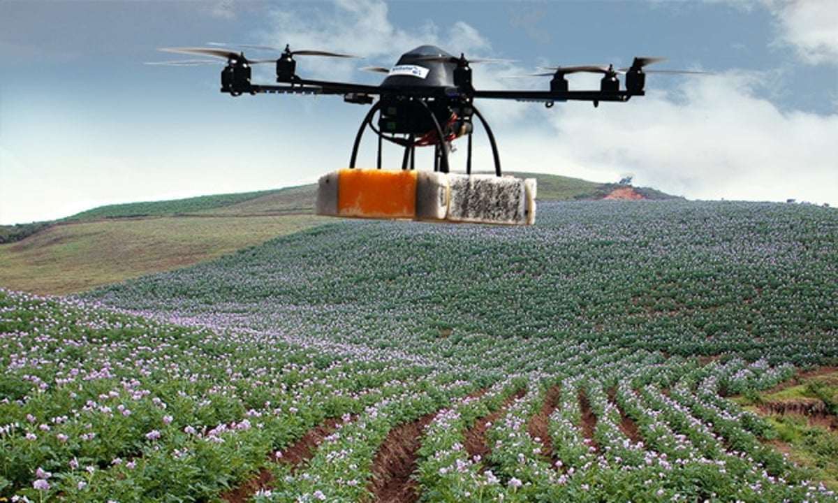How Drones Can Detect Crop Problems Early To Keep Farmers