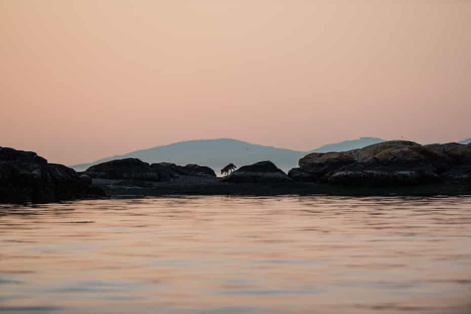 Takaya traverses rocks at sunset
