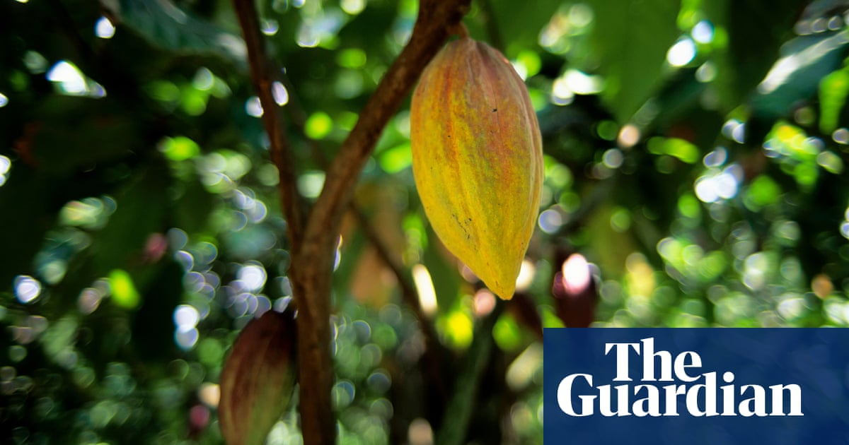 Fortune by Amanda Smyth review – passion and greed in the Caribbean