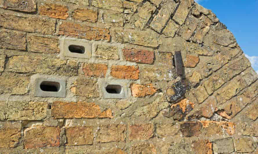 Swift nesting bricks in a cottage wall, Cambridgeshire, England