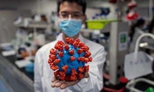An engineer holds a plastic model of Covid-19 at the Sinovac biotech facilities in Beijing, China
