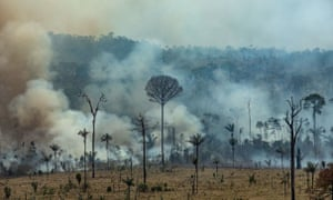 The fires in the world's largest rainforest have triggered a global outcry and are dominating the G7 meeting in Biarritz in southern France.
