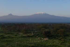 An aerial view of elephants grazing in Kimana Sanctuary with Mount Kilimanjaro in the background in Kimana, Kenya. Kenyan elephants risk a slow extinction in a bleak, ever-shrinking 'ecological island' in one of the country's most picturesque and photographed landscapes, according to a government report