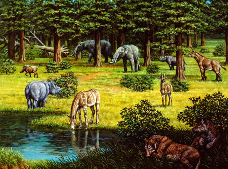 Miocene의 선사 시대 야생 동물.