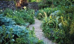 decking through a garden