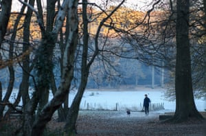 A man walks through Highgate woods