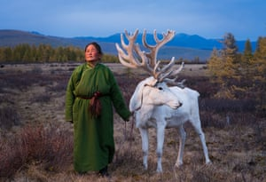Saintsetseg Jambaldorj, a member of the Tsaatan minority ethnic group, poses with a reindeer