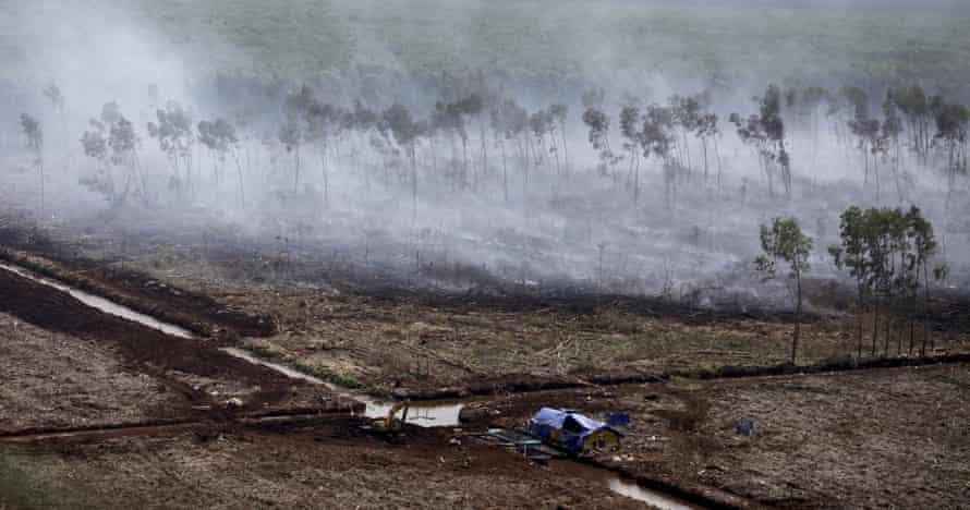 A peatland fire in Simpang Tiga village, Ogan Ilir, South Sumatra