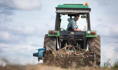 European farms could grow green and still be able to feed population