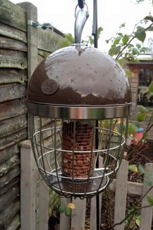The National Trust acorn peanut feeder