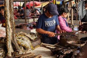 A market trader slices up fruit bats surrounded by pythons to his right, with bamboo-skewered 'bush' rats beneath them in Tomohon market in north Sulawesi, Indonesia