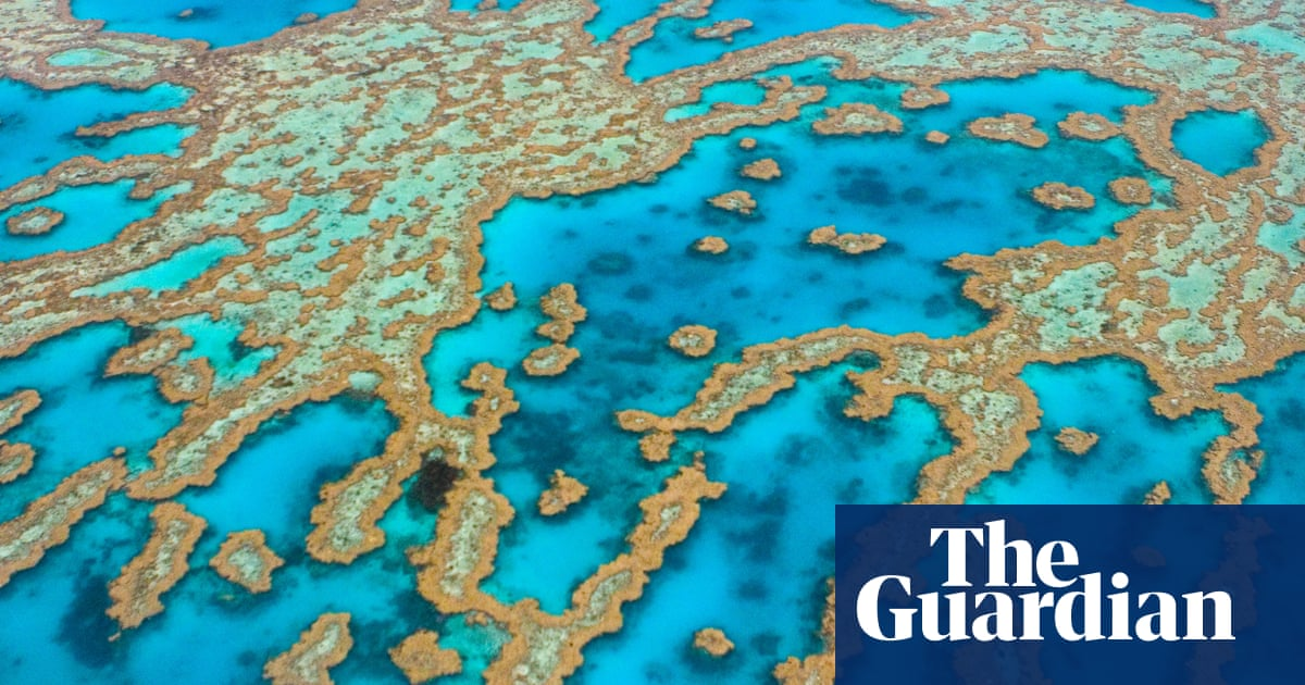 Queensland to hand out 15,000 travel vouchers to help rescue far north's Covid-hit tourism industry