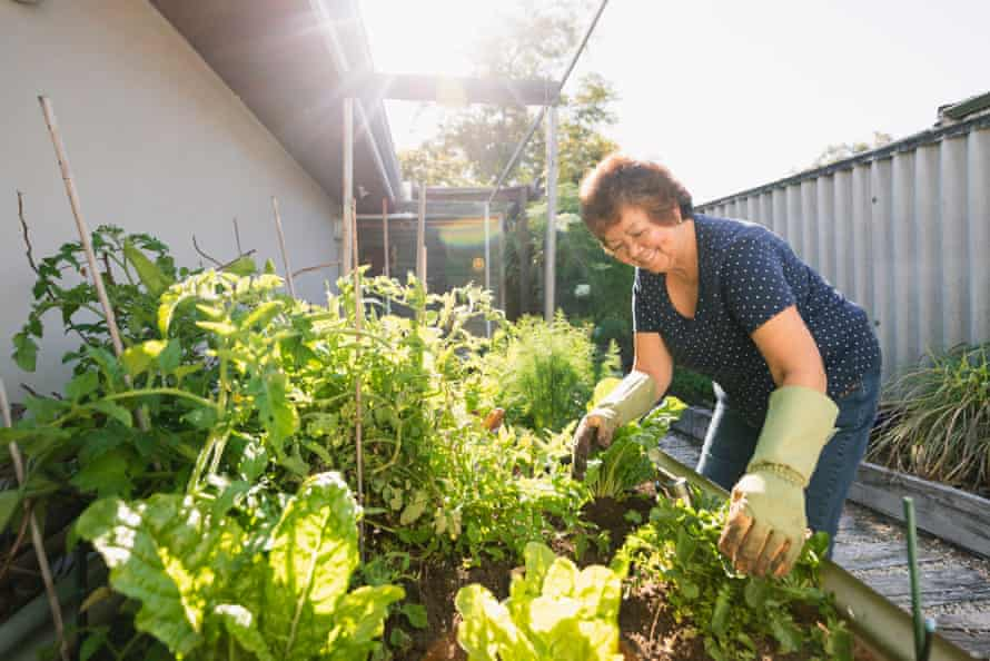 Older woman gardening at her home in Perth, Australia.