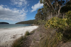 Fortescue Bay at the end of the Three Capes Lodge walk.