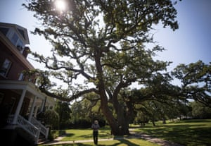 Terry Brown, the first African American superintendent at Fort Monroe national monument, stands by a 500-year-old tree which he calls the Witness Tree.