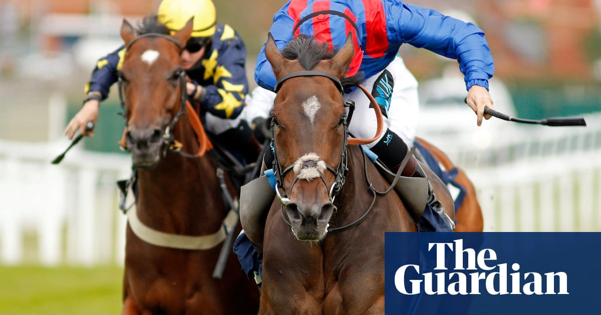 Talking Horses: Dubious Affair rates smashing bet in Northumberland Plate