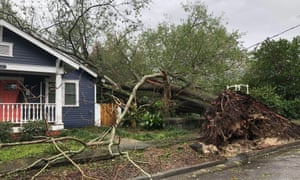 A tree misses a house by inches in Wilmington, North Carolina.