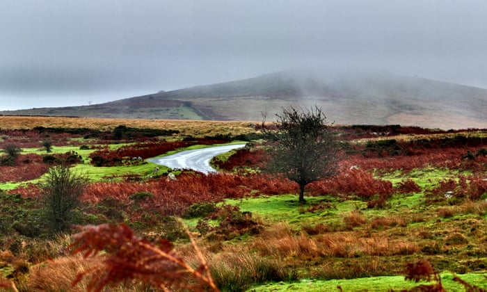 Bogs, fogs and dogs: a tour of Conan Doyle's Dartmoor   Travel   The
