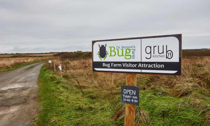 The sign to Bug farm and Grub kitchen, just outside of St Davids, Pembokeshire, Wales.