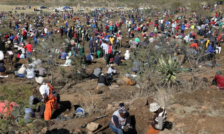Hundreds of people digging holes