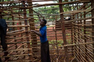 A Burundian refugee builds a hut from tree branches
