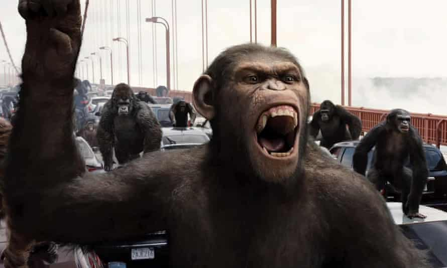 Building bridges … Caesar in Rise of the Planet of the Apes.