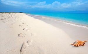 Footsteps and seashell in the white sand at Boca Grandi beach, Aruba.