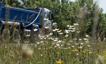 Some farmers are cutting down verges next to the roads on their land that would normally provide a habitat for nature.