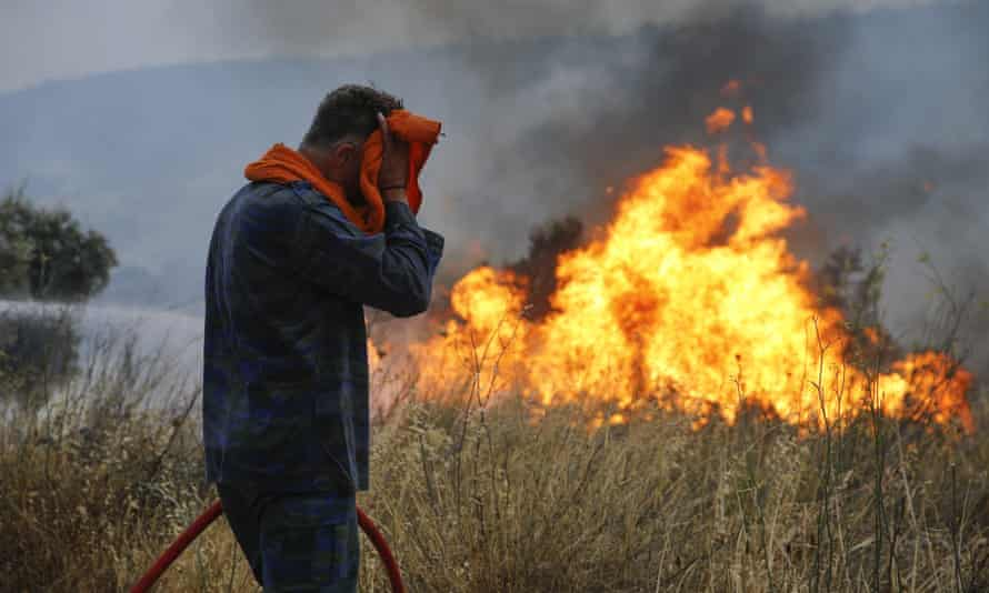 Firefighters and volunteers try to extinguish the fire in Athens, Greece.