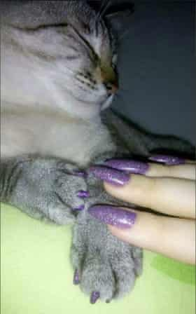 Cat and owner's matching nails