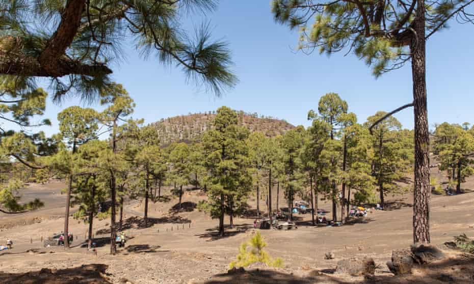 Chio recreation area and campsite (Tenerife island)